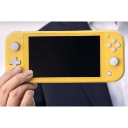 Écran LCD Nintendo Switch Lite